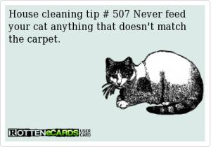 Carpet Cleaning Cartoon 1