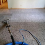 Image Of Certifed Carpet Cleaners Results in Eureka CA