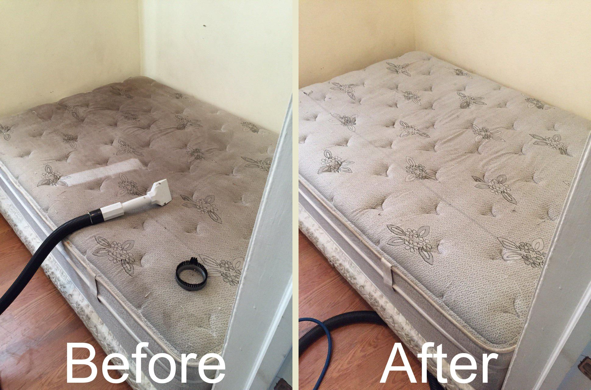 Mattress Cleaningmattress Cleaning A 1 Service Llc