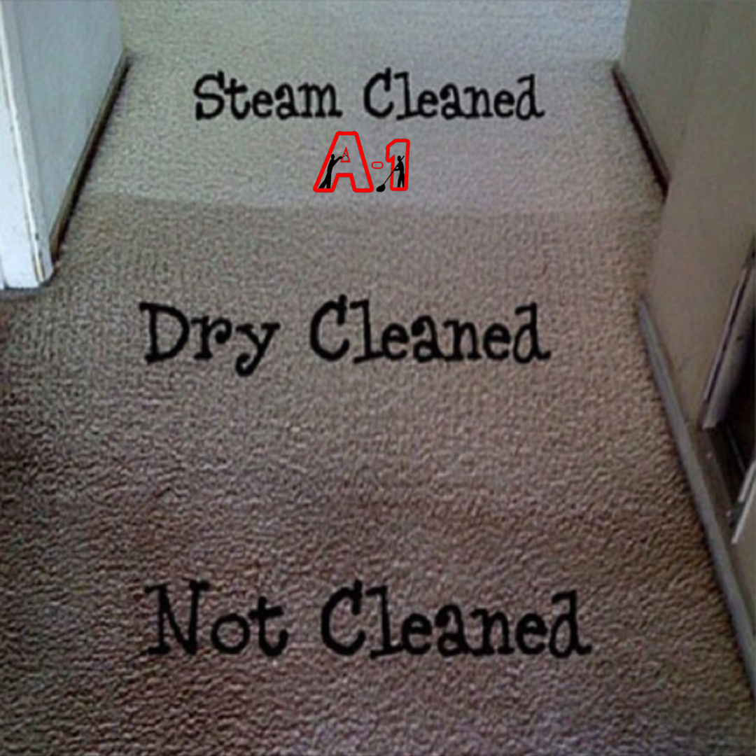 Steam Cleaned vs Dry Cleaned